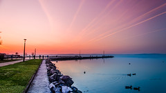 Warm & Cold (NickLesta) Tags: hungary magyarorszag spring sunset color colorful balaton lake water siofok multicolor sky duck promenade twilight