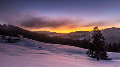 Winter sunset (**Meg's Photos**) Tags: suisse 2019 vd pautex blonay cantondevaud ch