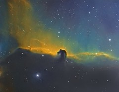 Horse Head Nebula IC434 HST Pallet (Bright Sky Photography) Tags: narrowband ccd astro astrophotography attic314l space hubble blue yellow green nebula deepspace ic434 horseheadnebula atik atikccd skywatcher equinox 80 astronomy