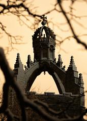 King's (PeskyMesky) Tags: aberdeen kingscollege kincardineoneil kingscollegeaberdeen tree scotland dof depthoffield light sun architecture city university canon canon5d eos