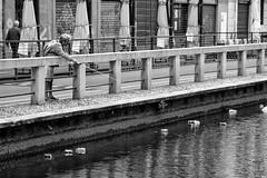 ACQUA_9644_B_W (luca.gianferrari) Tags: acqua aqua water milan fish naviglio pattumiera plastica