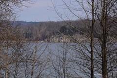 Across Lake Barkley_0692e (Porch Dog) Tags: 2019 garywhittington kentucky nikond750 nikkor200500mm february winter lbl landbetweenthelakes betweentherivers nature wildlife outdoors