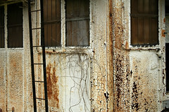 Ship's Cabin 2 (Doris Burfind) Tags: portdover shipyard rust decay weathered ship cabin ladder rural