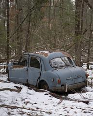 Fiat55mm (www.vanishingnewengland.com) Tags: abandoned car vehicle truck rust junk fiat suicide doors european