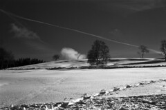A Winter Contrail (Film) (Harald Philipp) Tags: snow winter cold hill zug aegerital mortgartenburg switzerland swiss trees trail kodakretina retinaiiic fujiacros clouds contrail sky sunny hiking schneiderkreuznach monochrome bw blackandwhite analog analogue film 35mm