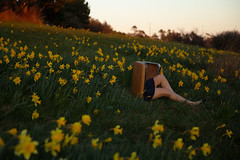 New beginnings (Lichon photography) Tags: dafodile flower spring suitcase travel yellow skirt leg selfie self selfportrait surreal surrealism conceptual canadian canada creative conceptualphotography concept dream dreaming victoria britishcolumbia beauty photography pretty magical magic portal