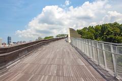 The Henderson Wave Bridge (yc4646) Tags: cloud clouds ecology ecosystem environment environmentalism footbridge nature plants scenery skies sky transport transportation tree singapore