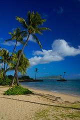 Merry Christmas From Hawai'i! (RobertCross1 (off and on)) Tags: oahu hawaii kahala sony fe1635mmf4zaoss a7rii alpha emount hi ilce7rm2 fullframe island mirrorless palmtrees bluesky clouds water beach surf pacificocean seascape landscape honolulu kahalabeach
