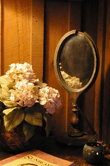 Flowers and Mirror (phthaloblu) Tags: stilllife mirror flowers cabin bb blowingrock nc northcarolina