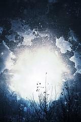 Aprende a regalar tu AUSENCIA  a quien no valora tu PRESENCIA. (elena m.d.) Tags: new creatividad texturas guadalajara elena azul bleu blue