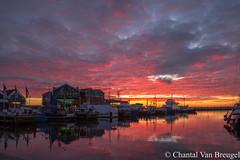 Zonsondergang 20-01-2019 (Chantal van Breugel) Tags: landschap zonsondergang reflecties kleuren haven urk flevoland canon5dmark111 canon24105 januari 2019
