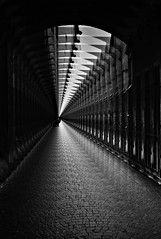 In the shadow (Fan.D & Dav.C Photgraphy) Tags: light monochrome abstract toned image silhouette tunnel curve beam projection high contrast perspective defocused design white background black beauty shadow twilight travel creative imaginary artstyle