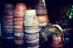 Waiting for Spring In the Orto Botanico In the Brera District of Milan ceramic pots wait for the Spring and new seedlings There is such beauty in simplicity sometimes and these pots attracted my attention the minute I spotted them. We were visiting in Sep (dewelch) Tags: