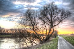 Waiting to be dressed (blavandmaster) Tags: else sky 6d februar hemel kleuren vand wolken printemps nrw lys été landscape zonsondergang colours kirchlengern himlen harmonic river lyng countryside lumière photomatixpro sonnenuntergang ostwestfalen skyer nature wasser licht eastwestphalia canon wiehengebirge ciel tyskland westfalen nuages water interesting frühling 2019 natur light rivière germany allemagne christiankortum landschaft hiver duitsland flus february himmel solnedgang westphalie deutschland clouds portawestfalica sunset lovely coucherdesoleil eté complete happy hdr eos6d minden