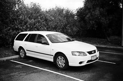 2007 Ford Falcon station wagon... (Matthew Paul Argall) Tags: kodakstar500af 35mmfilm blackandwhite blackandwhitefilm ilforddelta100 100isofilm car vehicle automobile transportation ford fordfalcon stationwagon carspotting