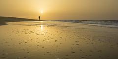longing for golden summer (stefanfricke) Tags: summer sun sunrise beach ocean fuerteventura sony a6000 sel1018 ilce6000 reflection golden