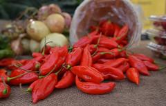 Red Hots (Kim Yokota) Tags: wychwoodbarnesfarmersmarket august2018 summer artscapewychwoodbarns torontoontario canada nikond7000 nikonafsnikkor24mmf14ged chilipeppers red hot vegetable food