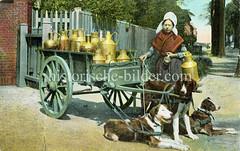 X990013 arbeitshund belgien (stadt + land) Tags: hunde hund bilder fotos arbeitshund historisch früher aufgabe transport alte fotografien