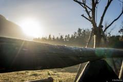 DSC03548 (BiciNatura) Tags: a6000 allmountain am bicidamontagnaguidonia bicinatura biie cruciani montilucretili mountain mtb palombarasabina sony torretta