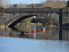 Bridge to bridge (Phil Gayton) Tags: water buoy buoyant bridge grass tree architecture brutus river dart totnes devon uk