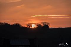 Lever de soleil (Dicksy93) Tags: dsc03340 lever de soleil sunrise lumière ciel sky nuage cloud arbre tree extérieur outdoor armorique port dahouët pléneufvalandré bretagne breizh bzh brittany côtesdarmor 22 france europe dicksy93 catherine olivier sony dscrx10m4 24600mm f2440