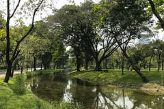 люмпини-парк-lumpini-park-bangkok-9076