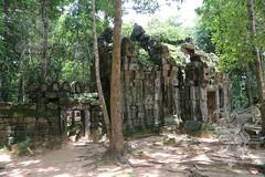 Angkor_Ta_Som_2014_33