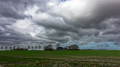 Frisian Farm In Windy Weather (Alfred Grupstra) Tags: ruralscene nature agriculture farm field cloudsky sky landscape grass scenics meadow cloudscape barn outdoors nopeople architecture nonurbanscene builtstructure old blue frisia