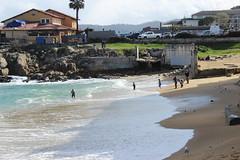 IMG_9809 (mudsharkalex) Tags: california monterey montereyca canneryrow mcabeebeach beach