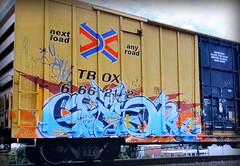 (timetomakethepasta) Tags: ghor freight train graffiti art ttx tbox boxcar