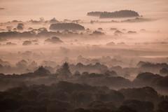 Monts d'Arrée (Faouic) Tags: france finistère bretagne montsdarrée brume miste