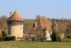 Château XV XVI (Herve_R 03) Tags: france castle château architecture charente poitoucharentes