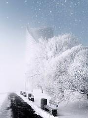 Freezing and foggy morning in the city! (Rojs Rozentāls) Tags: riga rīga ryga swedbank saulesakmens krastmala pārdaugava frost snow winter winterinlatvia ziema morning fog foggy mist architecture latvija latvia lettland lettonie ziemalatvijā