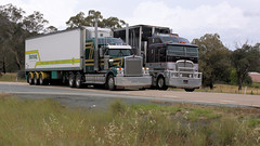Race Ya (1/2) (Jungle Jack Movements (ferroequinologist)) Tags: kenworth k200 t900 rocky lamattina sons fruithaul carrots vege fruit versus move t904 woolworths ron finemore volvo fm450 transport yass haulage bowning nsw new wales australia hume highway horsepower big rig haul freight cabover trucker drive carry delivery bulk lorry hgv wagon road nose semi trailer deliver cargo interstate articulated vehicle load freighter ship motor engine power teamster truck tractor prime mover diesel driver cab cabin loud rumble beast wheel double b pass