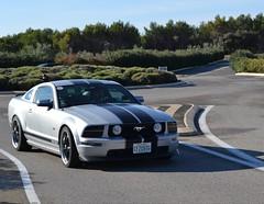 FORD Mustang GT Coupé - 2005 (SASSAchris) Tags: ford mustang gt coupé voiture américaine tours castellet circuit ricard 10000