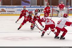Troja vs Skövde 27 (himma66) Tags: onepartnergroup hockey ishockey icehockey youth troja trojaljungby skövde ice cup puck skate team ljungby ljungbyarena