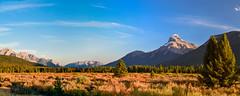 Canadian Rockies, Alberta, Canada (Agirard) Tags: icefields parkway banff jasper canada rockies alberta landscape grass rock geology trees
