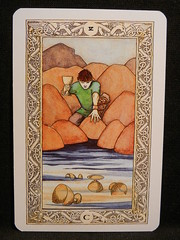 Five of Cups. (Oxford77) Tags: tarot thenorsetarot norse viking vikings cards card tarotcards