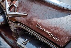 Hunk of Metal (Maureen Medina) Tags: artizenimages maureenmedina dodge classiccar old vintage vehicle logo chrome metal tailgate trunk hood peeling paint