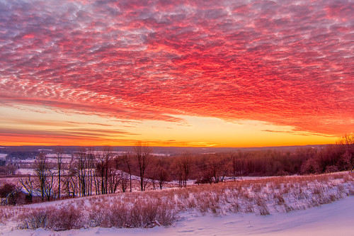 Beautiful Morning Winter Sunrise With Pink Clouds And Snow Covered Hill With Bare Trees