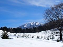 a Szekatúra / Secătura (debreczeniemoke) Tags: tél winter hó snow túra hiking erdő forest fa tree hegy mountain gutin gutinhegység gutinmountains hegycsúcs mountaintop szekatura secătura ég sky olympusem5