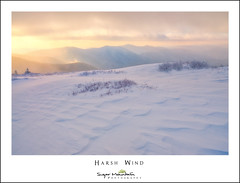Harsh Wind (DKNC) Tags: roundbald roanhighlands winter snow sunrise cold windy daleking