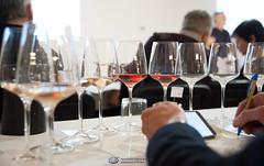 Drink Pink Think Pink-27 (Associazione Italiana Sommeliers - Verona) Tags: ais verona veneto angelo peretti chiaretto rosè valtenesi cerasulo castel del monte salice salentino