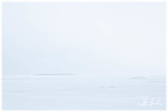Across the ice to Devil Island (D J England) Tags: lakehuron blizzard winter canoneos5dmkiii lake brucepeninsula djenglandphotography sigma24105mmf4dgoshsma douglasjengland bonnetcove southernontario snow ontario canada djengland dje tobermory shore