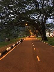 Taiping | 太平 #malaysia #jennypoonphotography #ilovenature #ilovephotography (jennypoon92) Tags: malaysia jennypoonphotography ilovenature ilovephotography