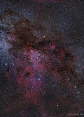 The Gum Nebula in Vela (astrofan80) Tags: astronomie deepsky gumnebel gum12 milchstrase nebel sternhimmel südhimmel tivoli vela