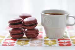 some choco macaroons ? (*steveH) Tags: macarons frenchmacarons chocolate chocoholic coffee sweet homebaking