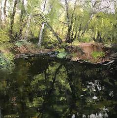 From That Calm Stream - Oil on canvas 80 x 80 cm (www.sandragraham.co.uk) Tags: artartworkartistartistscontemporaryartcollectorstreambrookburnwaterflowingnaturepaintingartistsimpastopainting interiordesign interior inspiration forest palleteknife canvasnature canvas painting nature worcestershire fishing trees