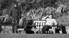 Enjoying the Spring Sunshine 03 (byronv2) Tags: scotland edinburgh edimbourg blackandwhite blackwhite bw monochrome bench banc seat seated sitting sunshine sunlight spring princesstreet princesstreetgardens gardens park newtown peoplewatching candid street people sit