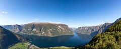 Panoramablick Aurlandsfjord - Fotoreise Norwegen (Foto-Wandern.com) Tags: norwegen stegastein norway scandinavia skandinavien fotoreise fotoreisen fotowanderncom aurlandsfjord fjord aurlandsvangen aussichtspunkt landschaft outdoors outside nature blue